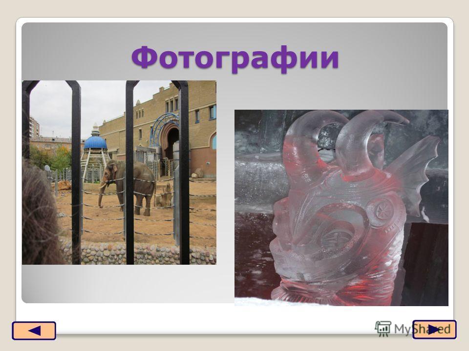 Фотографии 2