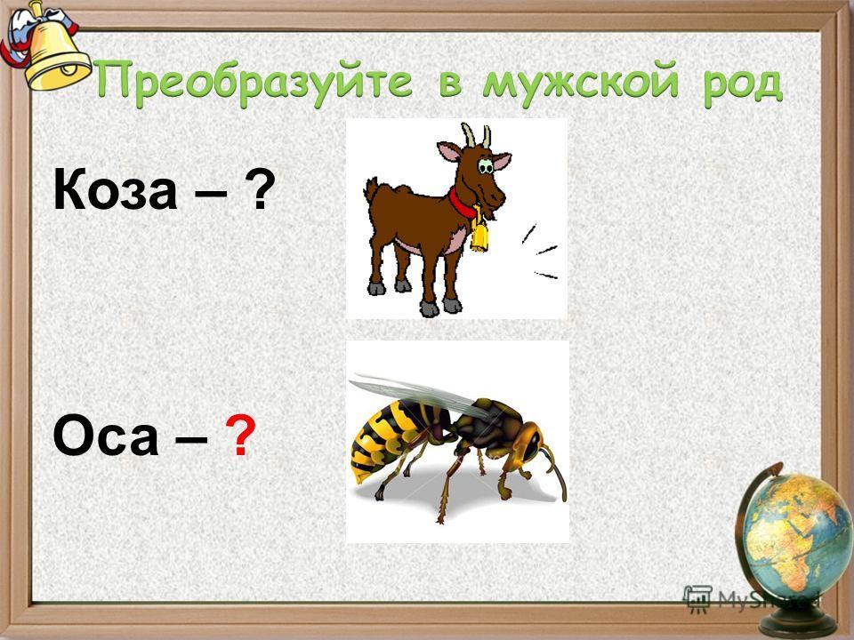 Коза – ? Оса – ?