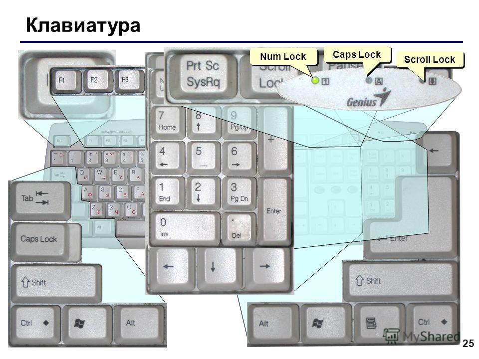 25 Клавиатура Scroll Lock Caps Lock Num Lock