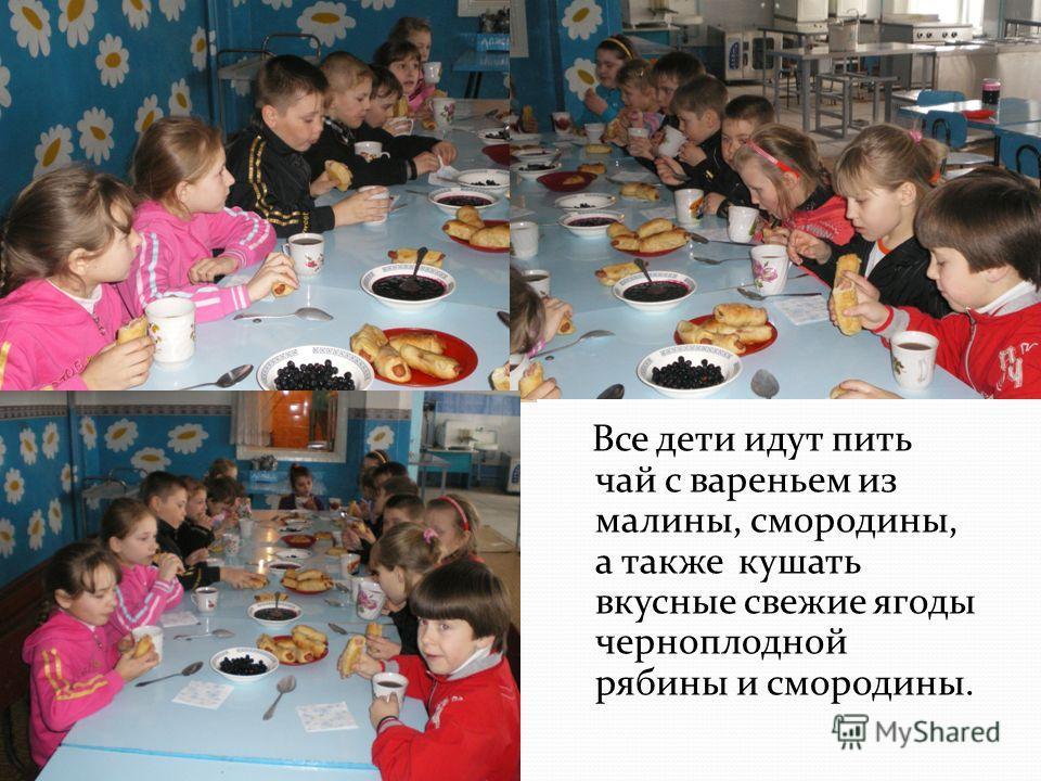 Все дети идут пить чай с вареньем из малины, смородины, а также кушать вкусные свежие ягоды черноплодной рябины и смородины.
