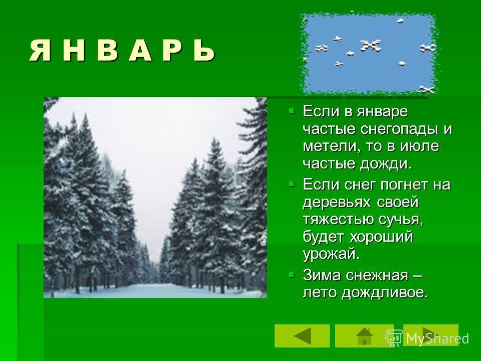 Я Н В А Р Ь Если в январе частые снегопады и метели, то в июле частые дожди. Если снег погнет на деревьях своей тяжестью сучья, будет хороший урожай. Зима снежная – лето дождливое.