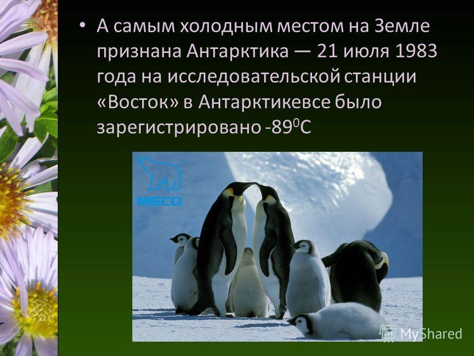 А самым холодным местом на Земле признана Антарктика 21 июля 1983 года на исследовательской станции «Восток» в Антарктикевсе было зарегистрировано -89 0 С