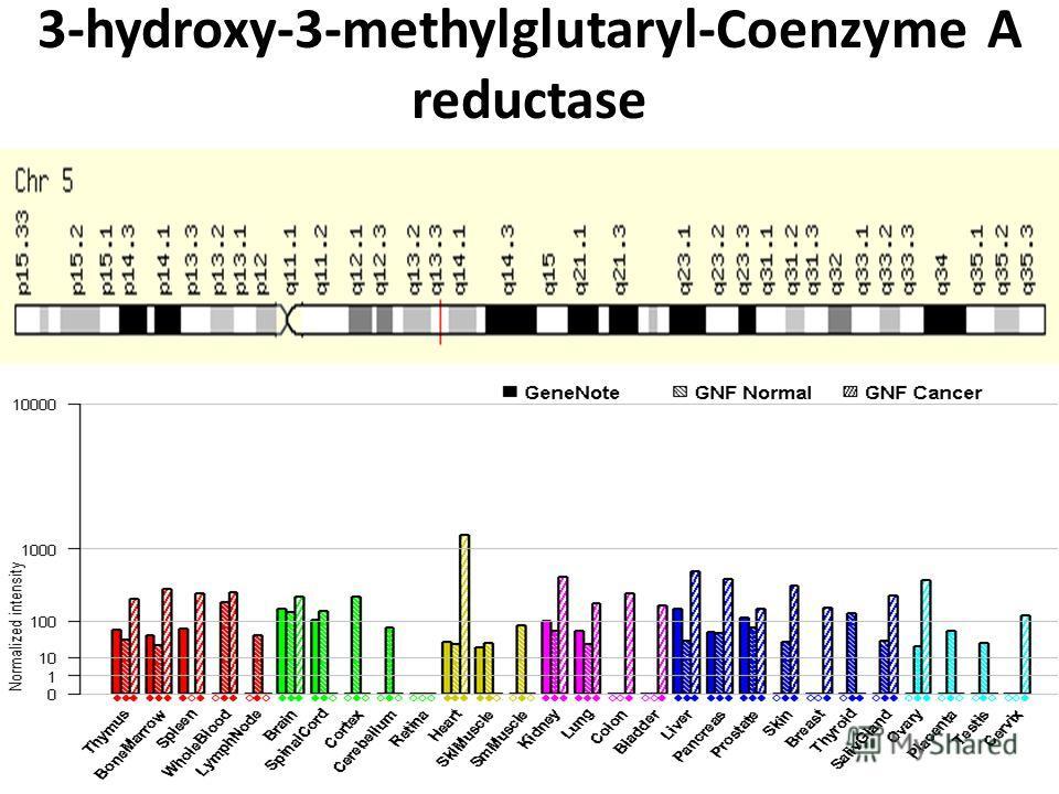 3-hydroxy-3-methylglutaryl-Coenzyme A reductase