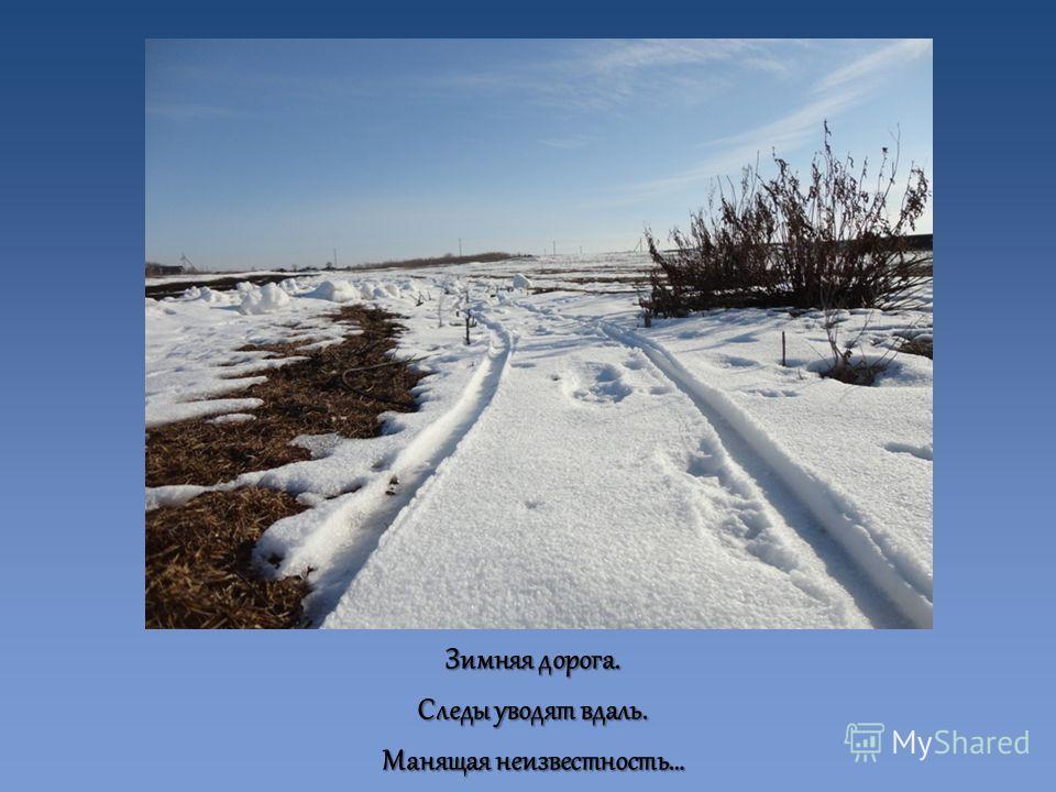 Зимняя дорога. Следы уводят вдаль. Манящая неизвестность…