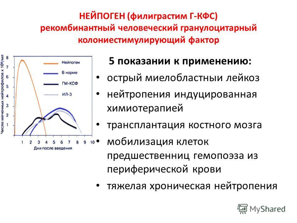 НЕЙПОГЕН (филиграстим Г-КФС) рекомбинантный человеческий гранулоцитарный колониестимулирующий фактор 5 показании к применению: острый миелобластныи лейкоз нейтропения индуцированная химиотерапией трансплантация костного мозга мобилизация клеток предш