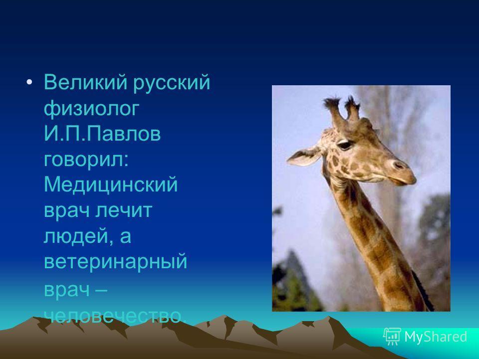 Великий русский физиолог И.П.Павлов говорил: Медицинский врач лечит людей, а ветеринарный врач – человечество.