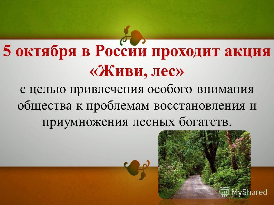 5 октября в России проходит акция «Живи, лес» с целью привлечения особого внимания общества к проблемам восстановления и приумножения лесных богатств.