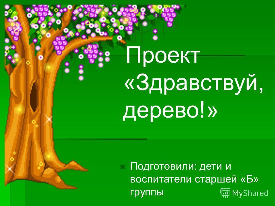 Проект «Здравствуй, дерево!» Подготовили: дети и воспитатели старшей «Б» группы