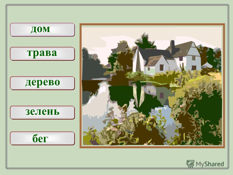 дом трава дерево зелень бег