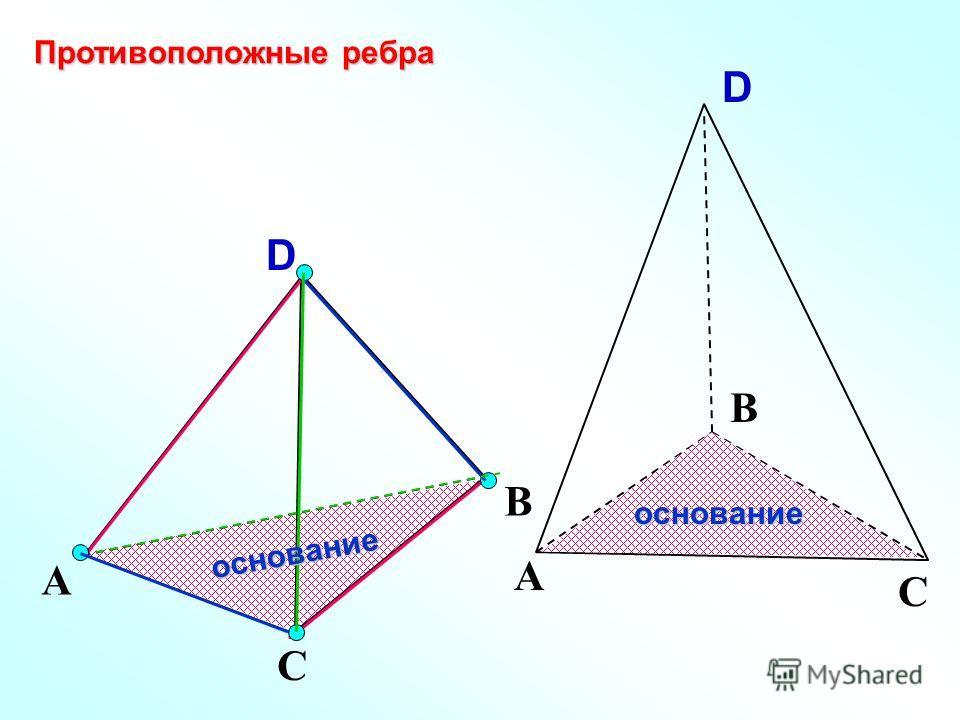 D А С В Противоположные ребра основание А С В Dоснование