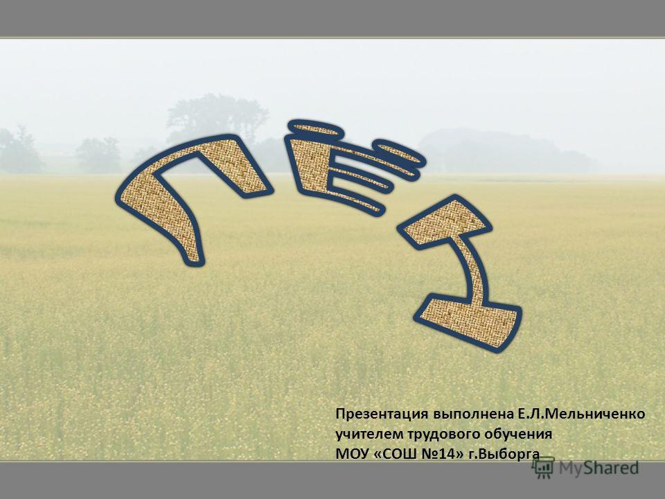 Презентация выполнена Е.Л.Мельниченко учителем трудового обучения МОУ «СОШ 14» г.Выборга