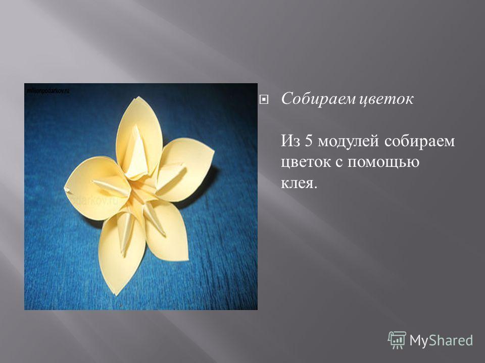 Собираем цветок Из 5 модулей собираем цветок с помощью клея.