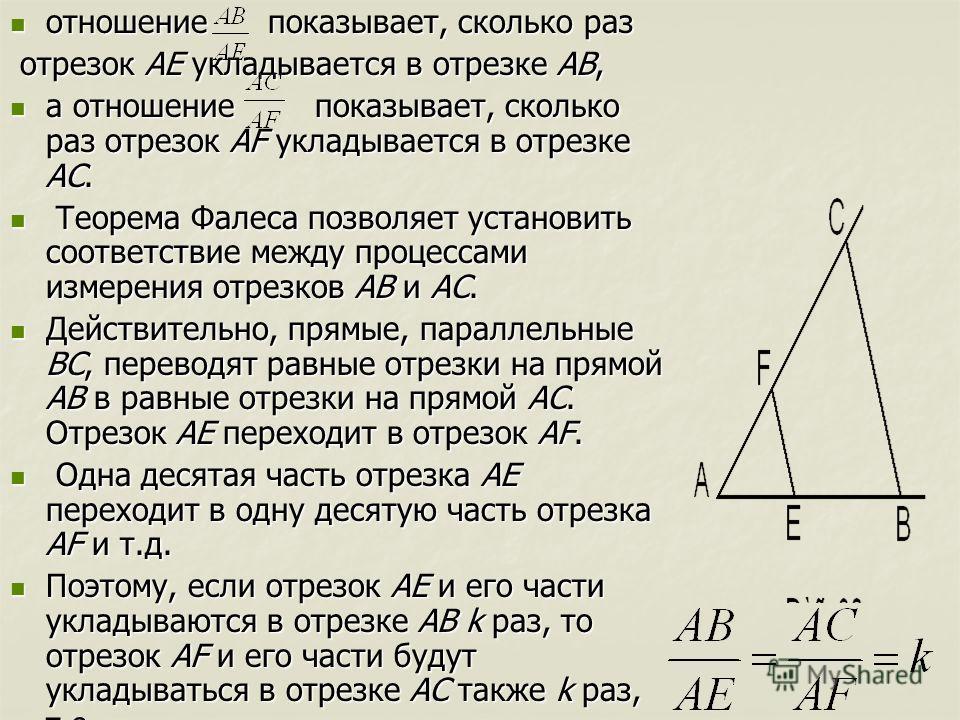 отношение показывает, сколько раз отношение показывает, сколько раз отрезок AE укладывается в отрезке АВ, отрезок AE укладывается в отрезке АВ, а отношение показывает, сколько раз отрезок AF укладывается в отрезке АС. а отношение показывает, сколько