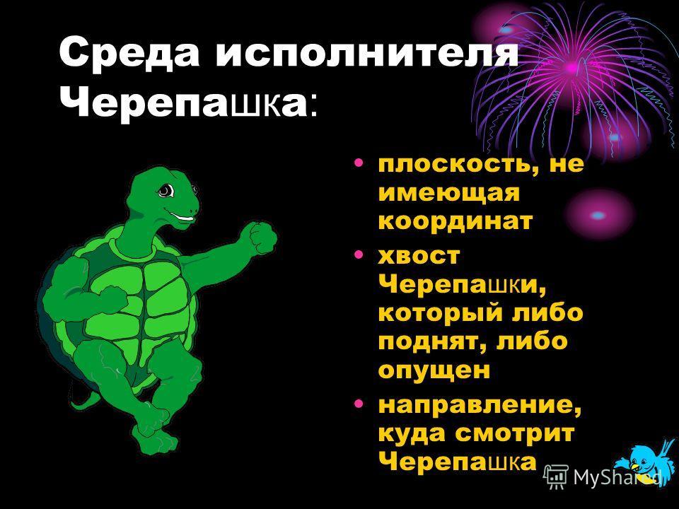 знакомство с исполнителем черепаха
