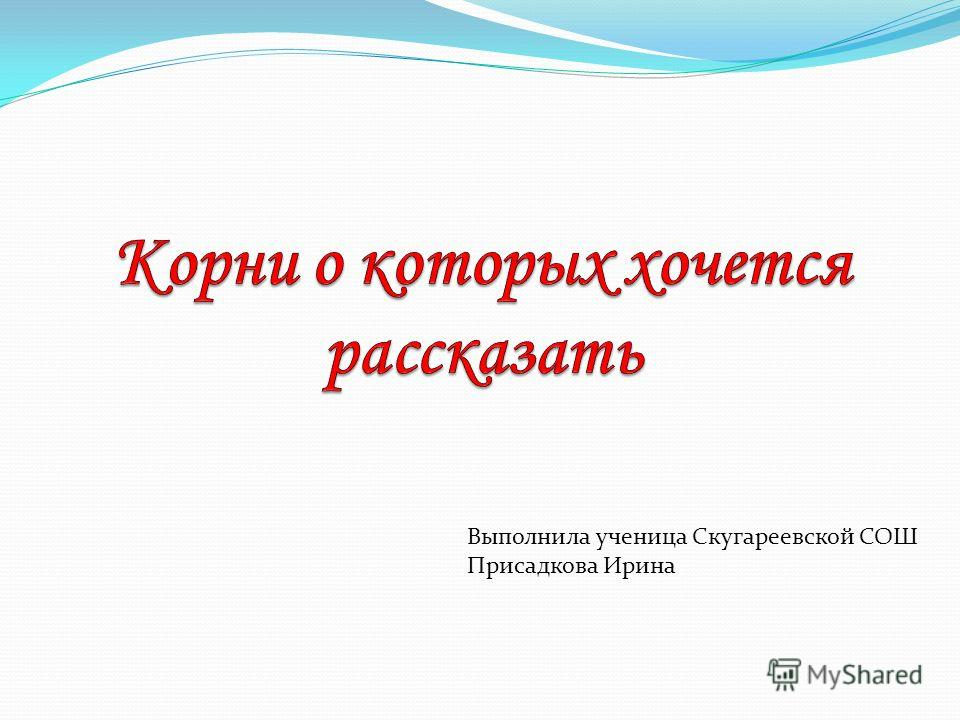 Выполнила ученица Скугареевской СОШ Присадкова Ирина