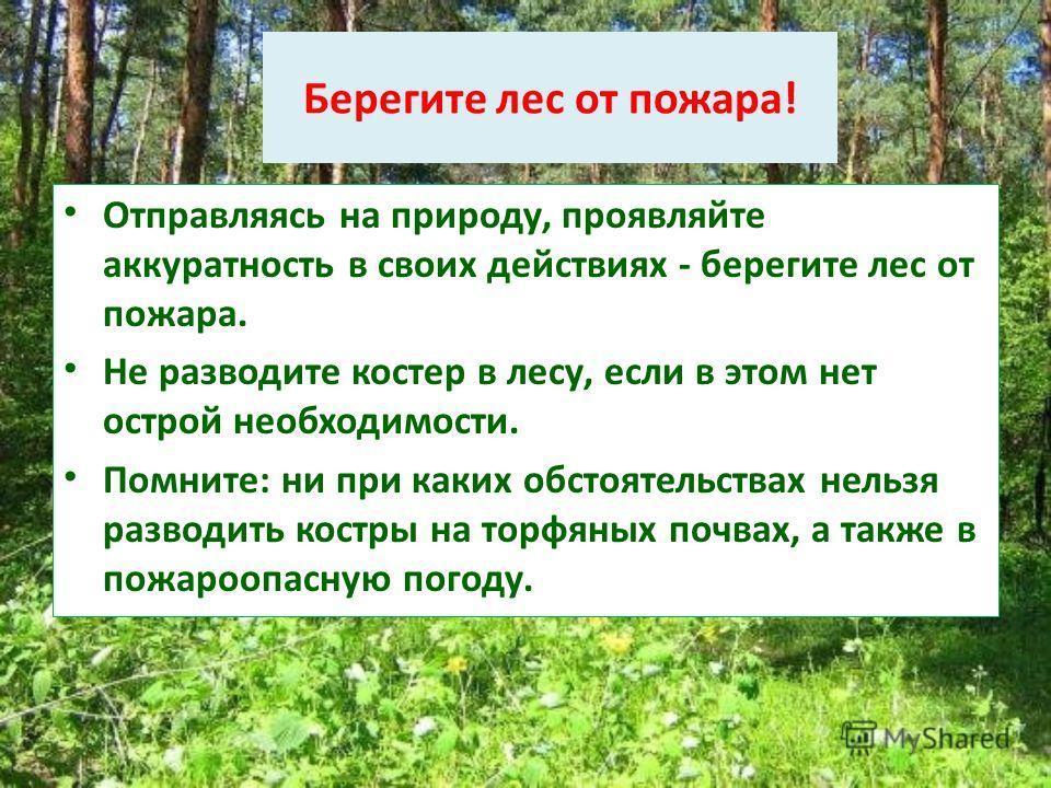 Берегите лес от пожара! Отправляясь на природу, проявляйте аккуратность в своих действиях - берегите лес от пожара. Не разводите костер в лесу, если в этом нет острой необходимости. Помните: ни при каких обстоятельствах нельзя разводить костры на тор