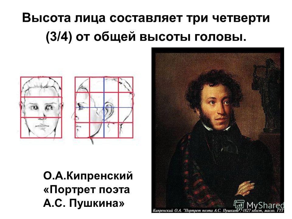 Высота лица составляет три четверти (3/4) от общей высоты головы. О.А.Кипренский «Портрет поэта А.С. Пушкина»