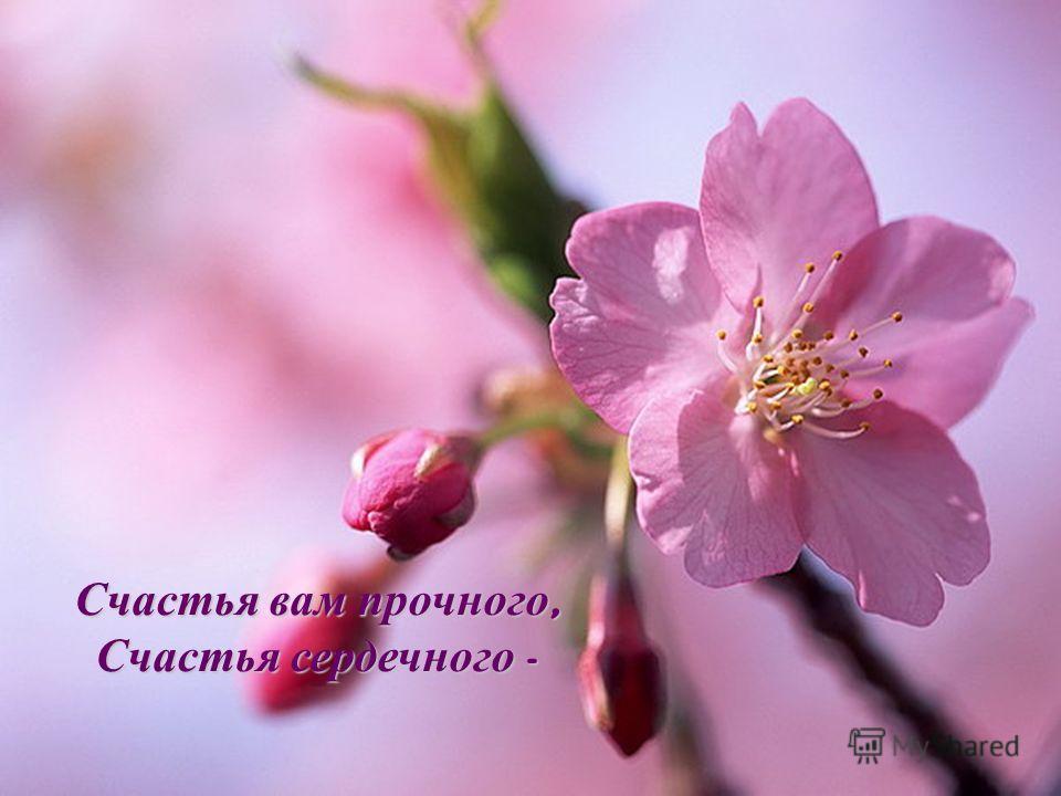 Счастья вам прочного, Счастья сердечного -