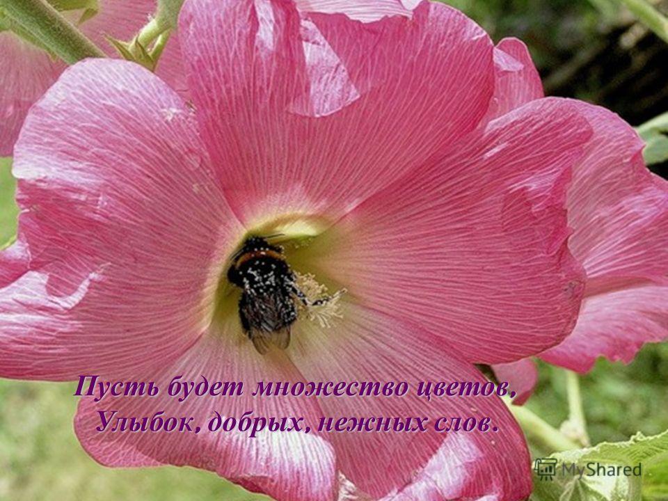 Пусть будет множество цветов, Улыбок, добрых, нежных слов.