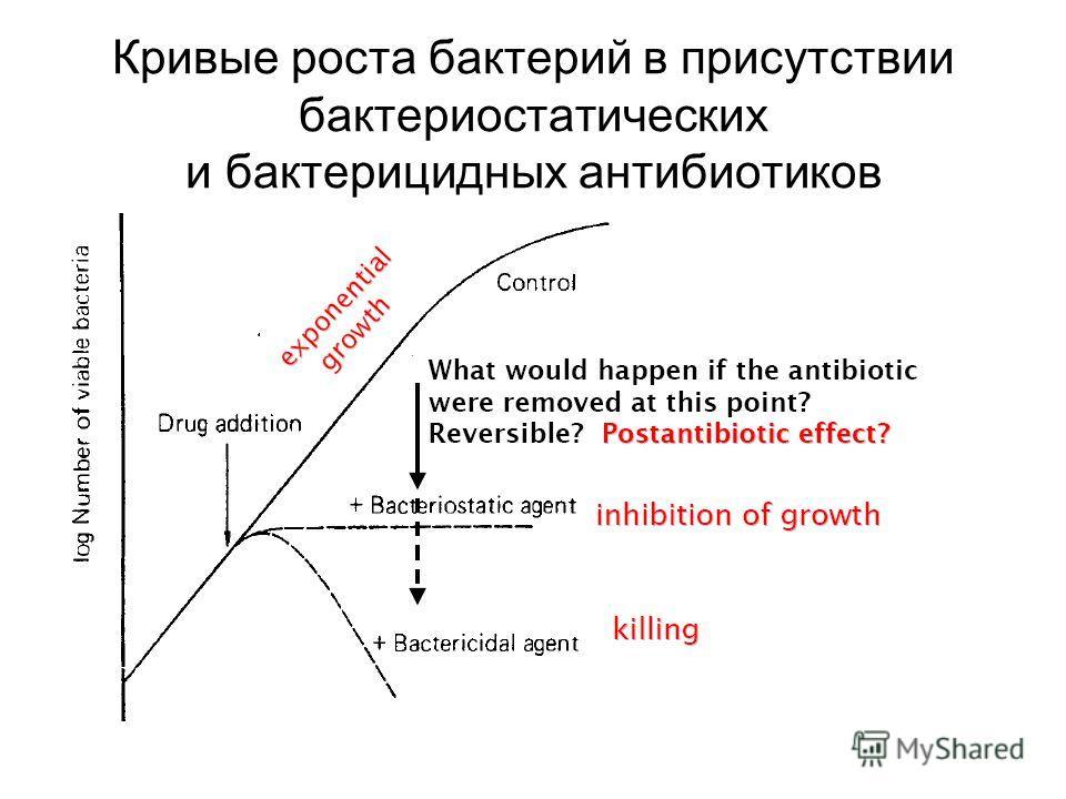 Кривые роста бактерий в присутствии бактериостатических и бактерицидных антибиотиков