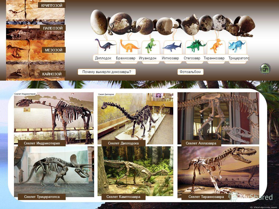 ДиплодокБрахиозавр ИгуанодонИхтиозаврСтегозаврТираннозаврТрицератопс Почему вымерли динозавры? КАЙНОЗОЙ МЕЗОЗОЙ ПАЛЕОЗОЙ КРИПТОЗОЙ Фотоальбом Скелет ИндрикотерияСкелет Диплодока Скелет ТрицератопсаСкелет ТираннозавраСкелет Камптозавра Скелет Аллазавр