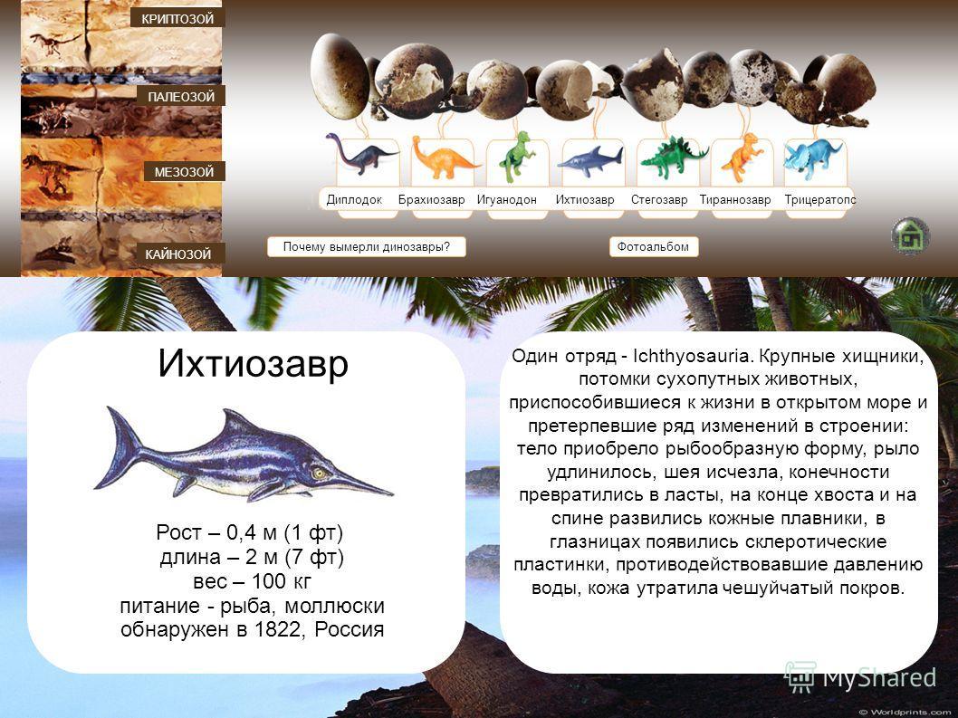 ДиплодокБрахиозавр ИгуанодонИхтиозаврСтегозаврТираннозаврТрицератопс Почему вымерли динозавры? КАЙНОЗОЙ МЕЗОЗОЙ ПАЛЕОЗОЙ КРИПТОЗОЙ Фотоальбом Ихтиозавр Рост – 0,4 м (1 фт) длина – 2 м (7 фт) вес – 100 кг питание - рыба, моллюски обнаружен в 1822, Рос