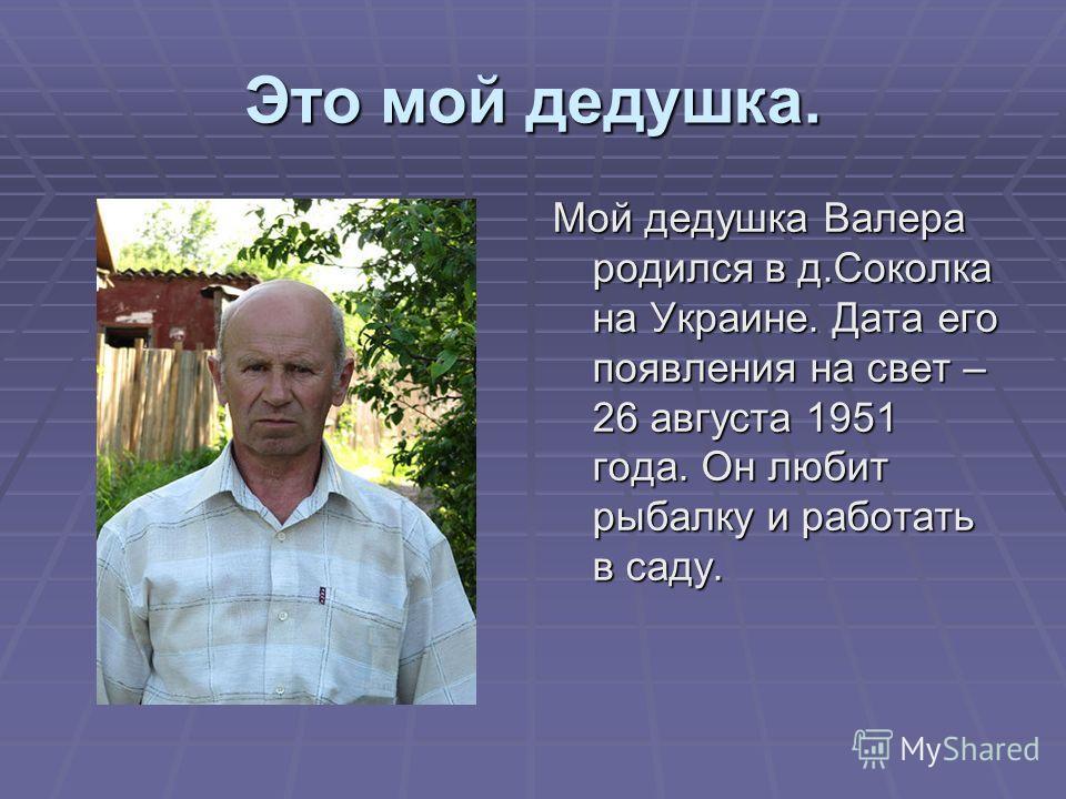 Это мой дедушка. Мой дедушка Валера родился в д.Соколка на Украине. Дата его появления на свет – 26 августа 1951 года. Он любит рыбалку и работать в саду.