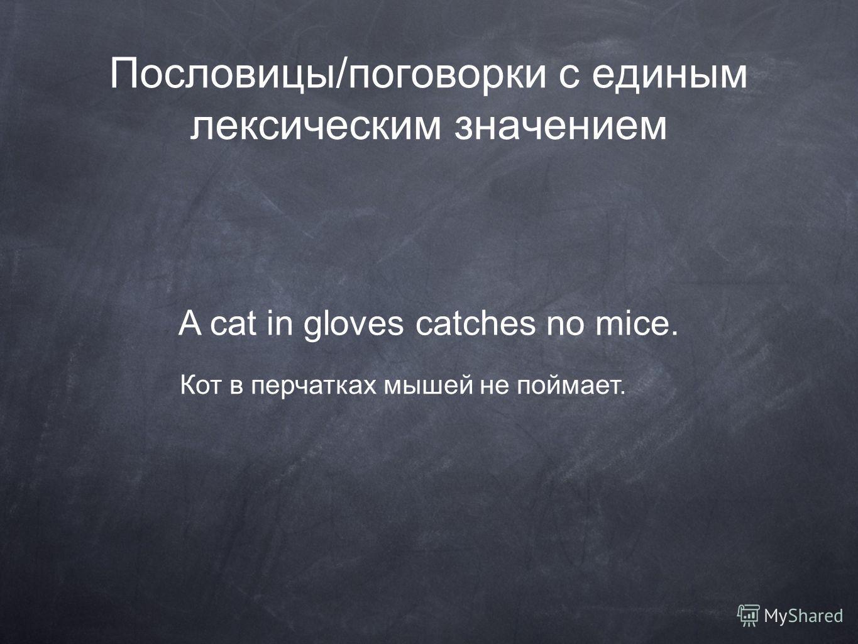 Пословицы/поговорки с единым лексическим значением A cat in gloves catches no mice. Кот в перчатках мышей не поймает.