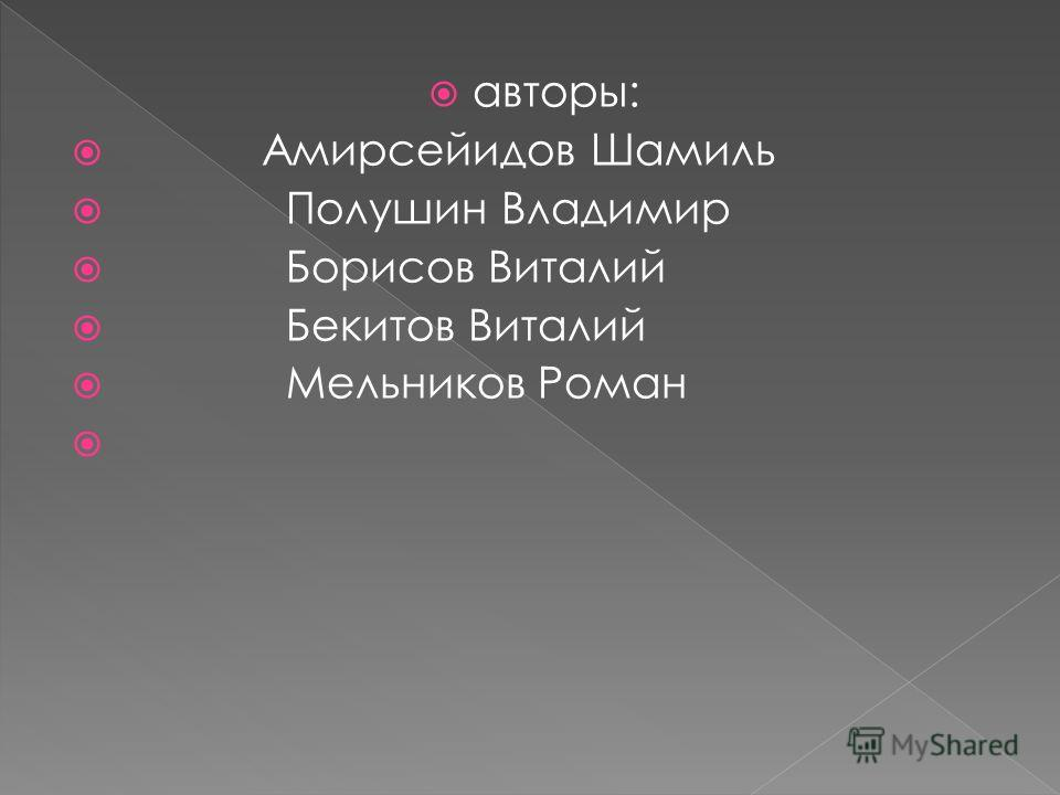 авторы: Амирсейидов Шамиль Полушин Владимир Борисов Виталий Бекитов Виталий Мельников Роман