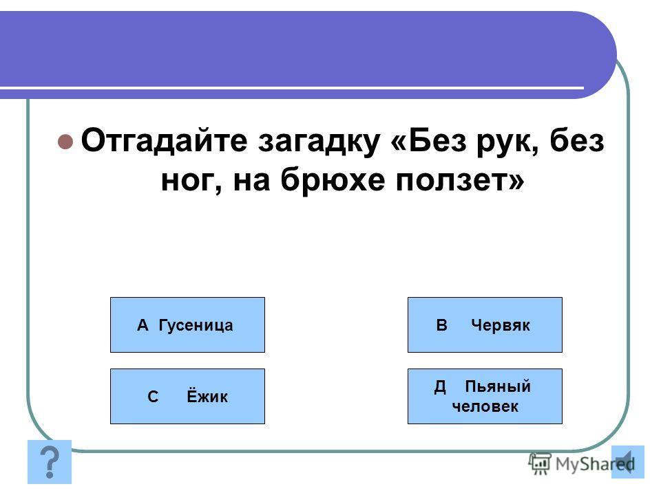 Правила игры За каждый правильный ответ- пожелания Подсказки: - Помощь зала - Звонок другу - 50 на 50