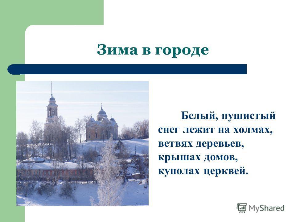 Зима в городе Белый, пушистый снег лежит на холмах, ветвях деревьев, крышах домов, куполах церквей.