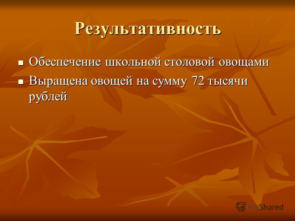 Результативность Обеспечение школьной столовой овощами Обеспечение школьной столовой овощами Выращена овощей на сумму 72 тысячи рублей Выращена овощей на сумму 72 тысячи рублей