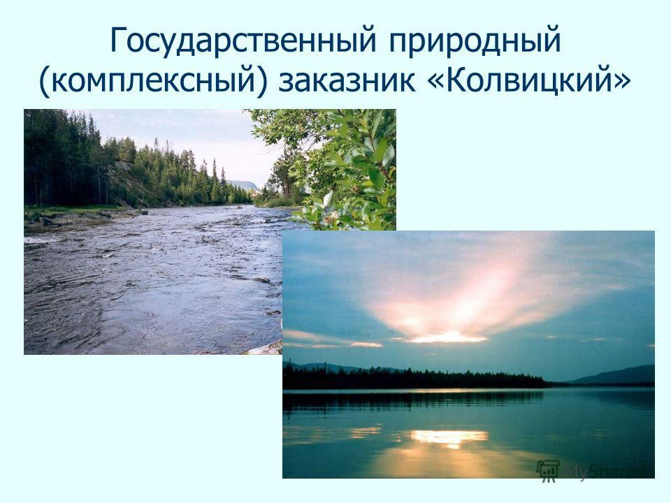 Государственный природный (комплексный) заказник «Колвицкий»