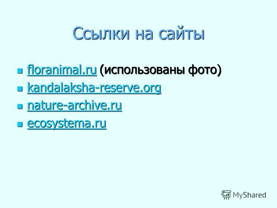 Ссылки на сайты floranimal.ru (использованы фото) floranimal.ru (использованы фото) floranimal.ru kandalaksha-reserve.org kandalaksha-reserve.org kandalaksha-reserve.org nature-archive.ru nature-archive.ru nature-archive.ru ecosystema.ru ecosystema.r