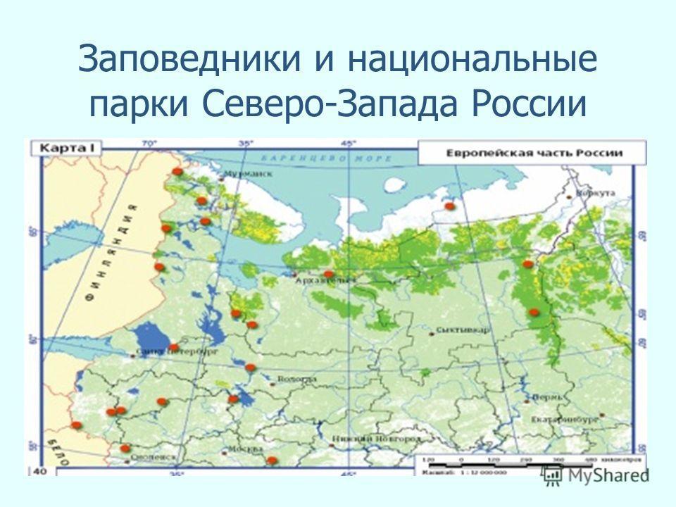 Заповедники и национальные парки Северо-Запада России