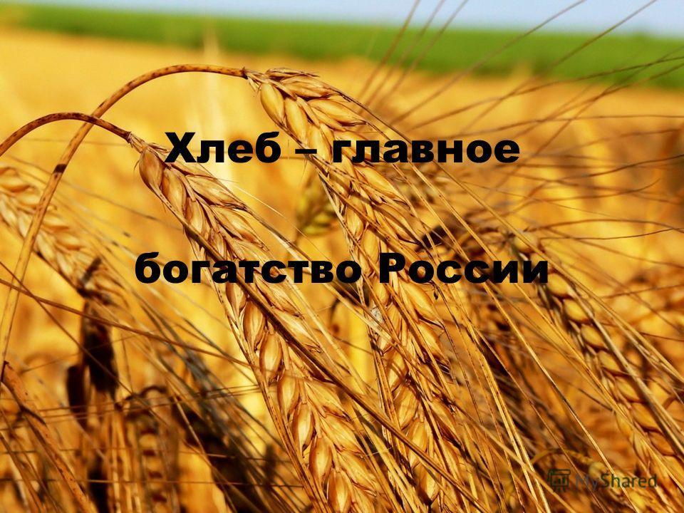 Хлеб – главное богатство России