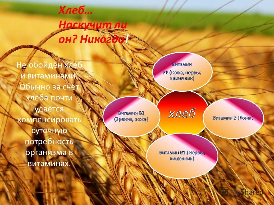 Хлеб… Наскучит ли он? Никогда! Не обойдён хлеб и витаминами. Обычно за счёт хлеба почти удаётся компенсировать суточную потребность организма в витаминах.