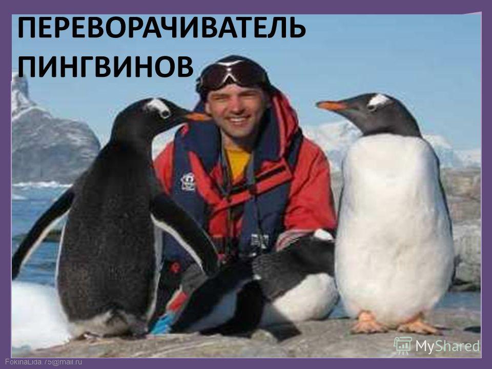 FokinaLida.75@mail.ru ПЕРЕВОРАЧИВАТЕЛЬ ПИНГВИНОВ
