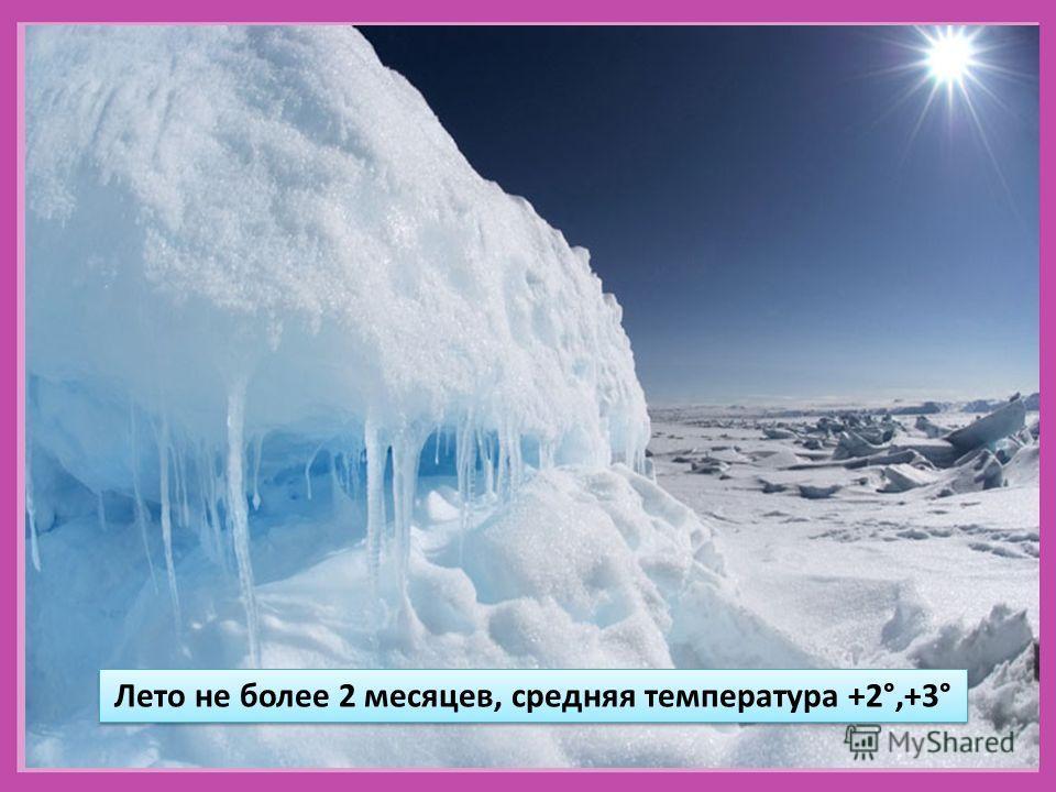 Лето не более 2 месяцев, средняя температура +2°,+3°