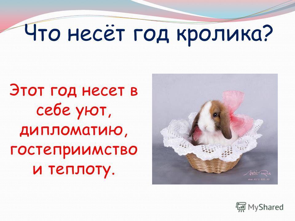 Что несёт год кролика? Этот год несет в себе уют, дипломатию, гостеприимство и теплоту.