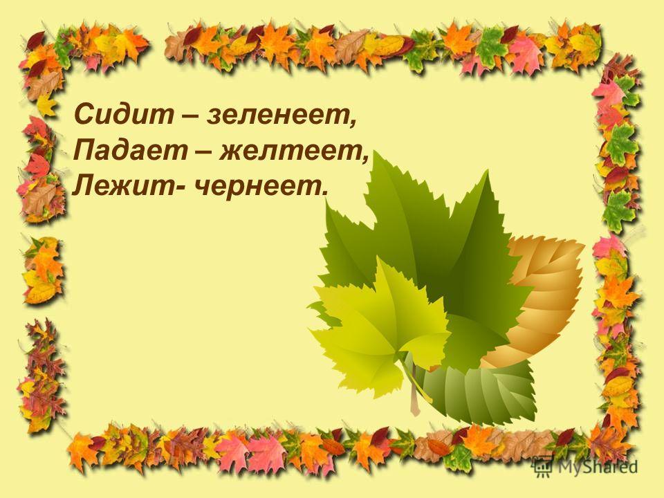 Утром мы во двор идем- Листья сыплются дождем, Под ногами шелестят И летят, летят, летят… осень