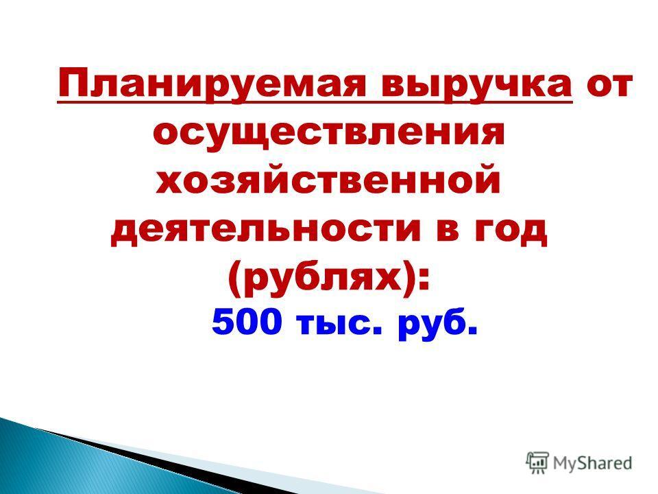 Планируемая выручка от осуществления хозяйственной деятельности в год (рублях): 500 тыс. руб.