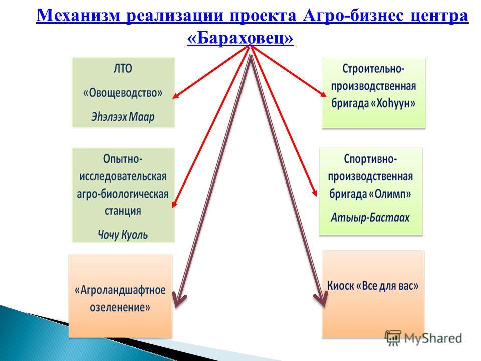 Механизм реализации проекта Агро-бизнес центра «Бараховец»