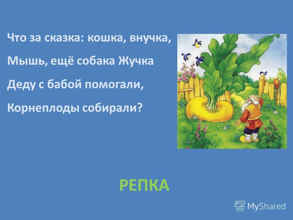 Что за сказка: кошка, внучка, Мышь, ещё собака Жучка Деду с бабой помогали, Корнеплоды собирали? РЕПКА