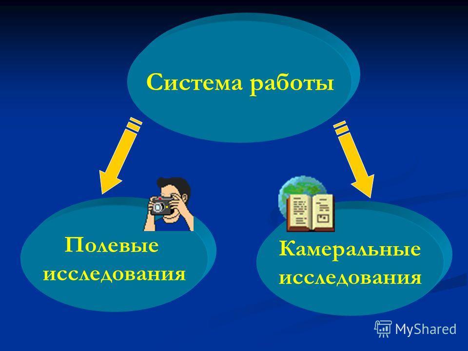 Система работы Полевые исследования Камеральные исследования
