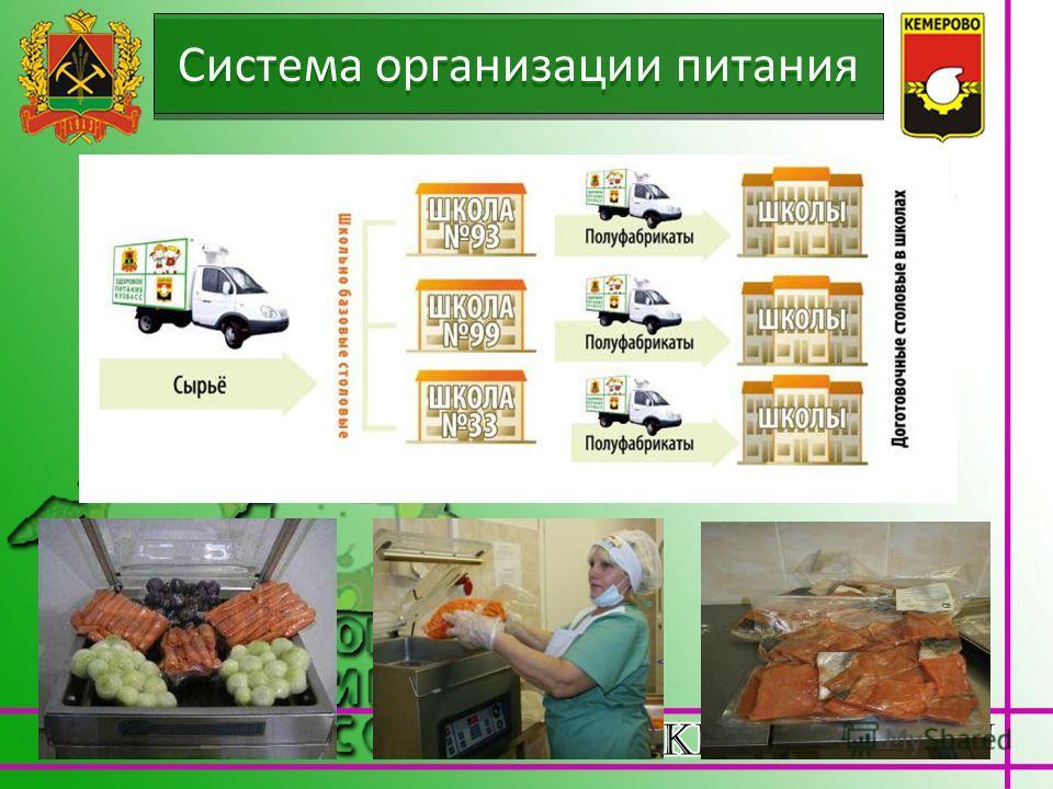 Система организации питания
