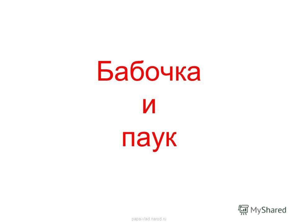 Бабочка и паук papa-vlad.narod.ru