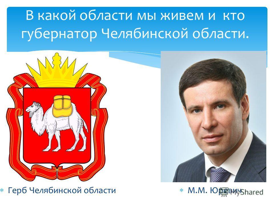 В какой области мы живем и кто губернатор Челябинской области. Герб Челябинской области М.М. Юревич