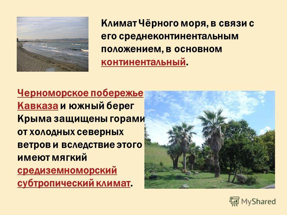 Климат Чёрного моря, в связи с его среднеконтинентальным положением, в основном континентальный. континентальный Черноморское побережье КавказаЧерноморское побережье Кавказа и южный берег Крыма защищены горами от холодных северных ветров и вследствие