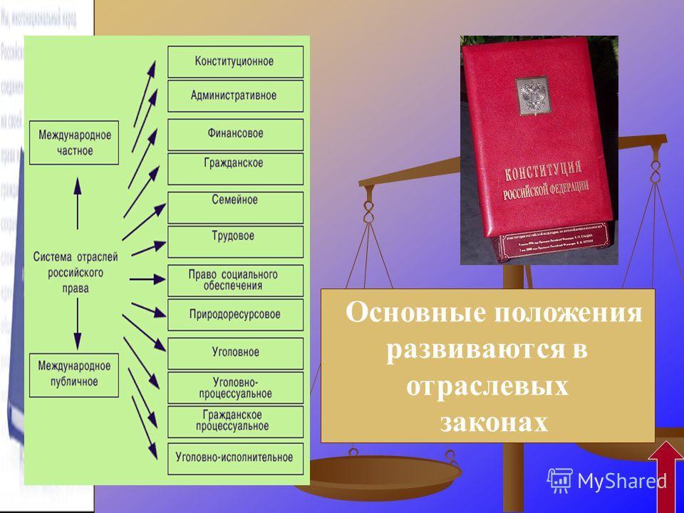 Основные положения развиваются в отраслевых законах